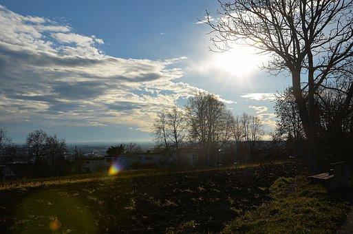 Ulm, Sun, Clouds, January, Sunbeam, Trees, Away, Nature
