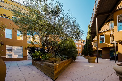 Court Yard, Condominiums, Apartments, Garden, Bench