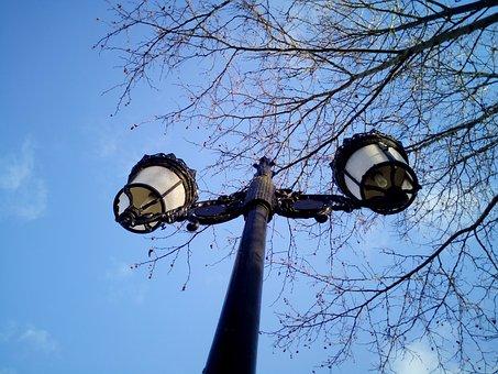 Streetlights, Lighting, Sky, Branches, Park, Lamp