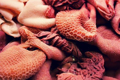 Rumen, Offal, Food, Raw, Kidneys, Cook, Meat, Guts