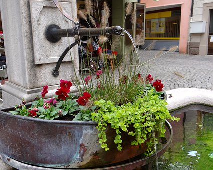 Fountain, Flowers, Red, Green, Bucket, Water Jet