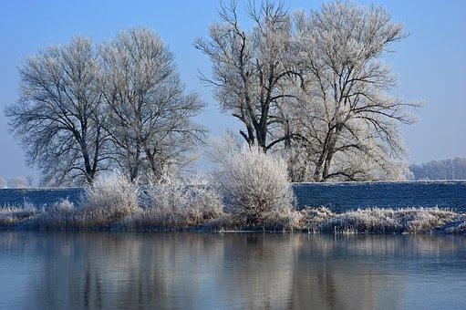 Hoarfrost, Ripe, Nature, Landscape, Trees, River