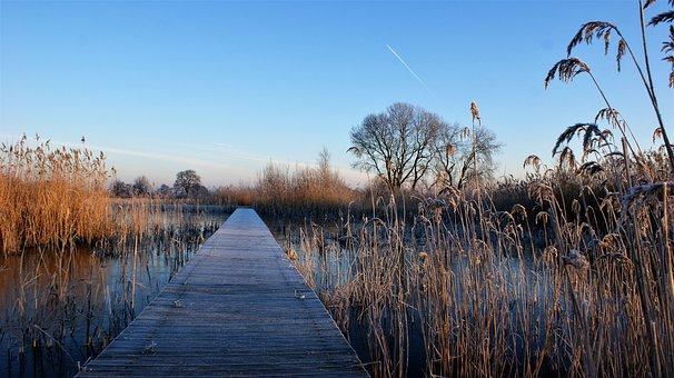 Winter, Frozen, Ripe Bridge, Cold, Wood, Wooden
