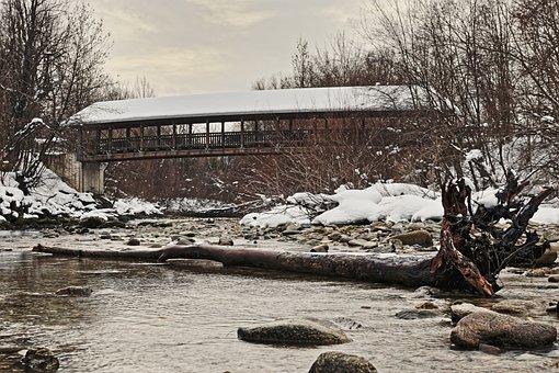 Bridge, Tree, Nature, Landscape, Scenic, Water, River