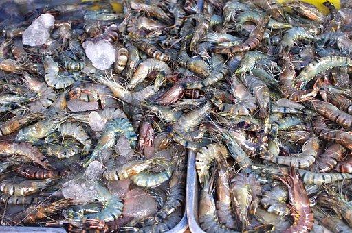 Thailand-market, Shrimp, Prawns, Seafood, Luxury