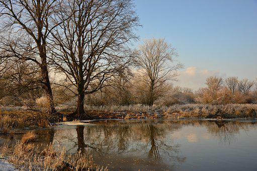 Landscape, Winter, Wintry, Aue, Nature, Winter Motif