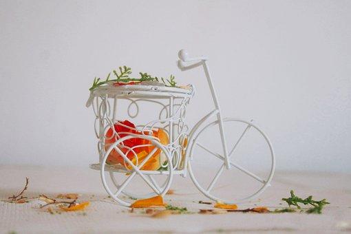 Bike, Flowers, White, Simplicity