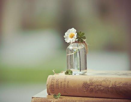Flower, Book, Read, Flowers, Books, Romantic, Old