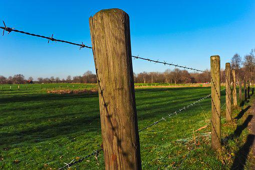 Landscape, Fence, Nature, Field, Rural, Scenic, Sky