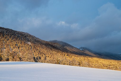 Wintry, Hill, Jura, Clouds, Mood, Light, Nature, White