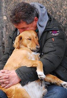 Friendship, Dog, Pet, Adorable, Friend, Love