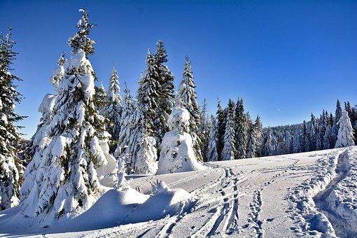 Winter, Mountains, Snow, Frost, Cold, Snowy, Frozen