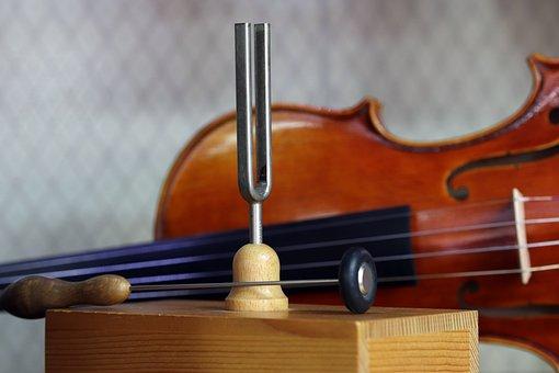 Music, Instrument, Well, Standard, Musician