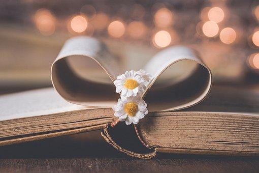 Book, Flower, Old, Read, Flowers, Literature, Books