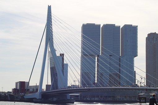 Netherlands, Rotterdam, Architecture, Erasmus Bridge