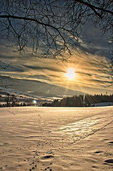 Wintry, Winter, Snow, Cold, Nature, Snowy, Winter Magic