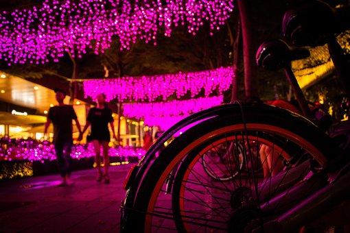 Bicycle, City, Taipei, Taiwan, Travel, Pink, Casual