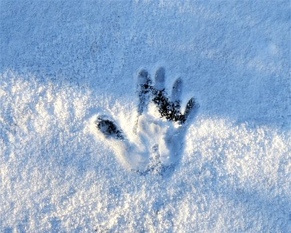 Winter, Snow, Trace, Reprint, Handprint, Finger