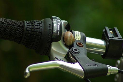 Bicycle, Bicycle Handlebar, Snail, Wet Weather