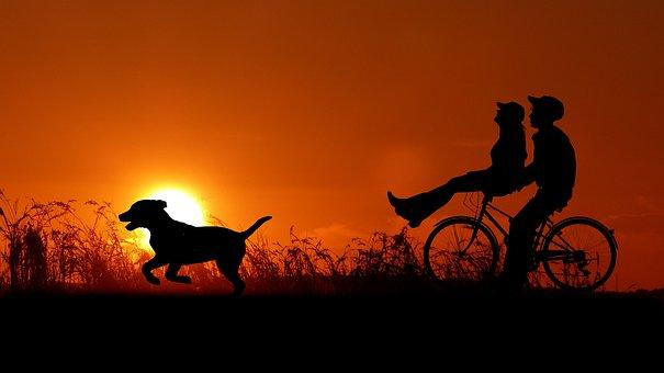 Sunset, Couple, Bike, Dog, Love, Romantic, Romance, Set