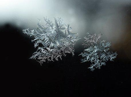 Crystal, Ice, Flake, Snow, Cold, Crystals, Gel, Nature