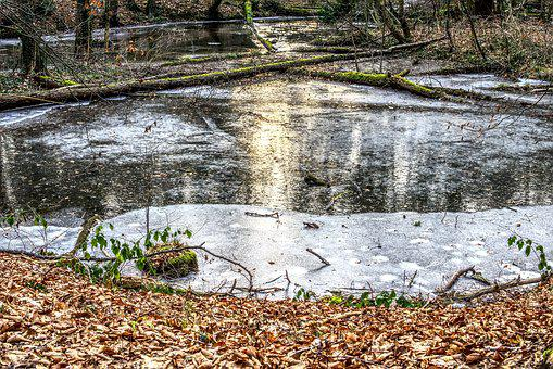 Frozen, Lake, Ice, Ice Rink, Cold, Sun, Mirroring