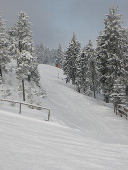 The Ski Slope, Winter, Mountains, Skiing
