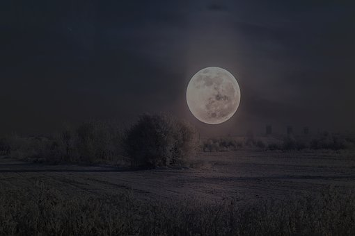 Landscape, Full Moon, Winter, Night, Camp, Tree