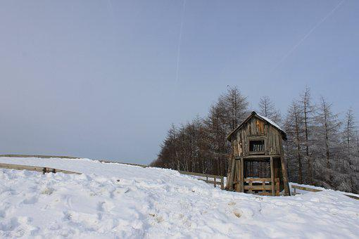 Hut, Snow, Winter, Scenery, Nature, Cattle Ranch