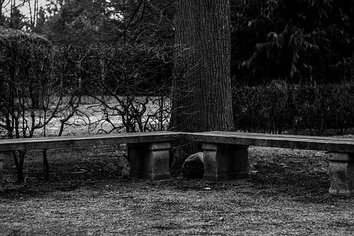 Bank, Wooden Bench, Bench, Seat, Sit, Park, Nature