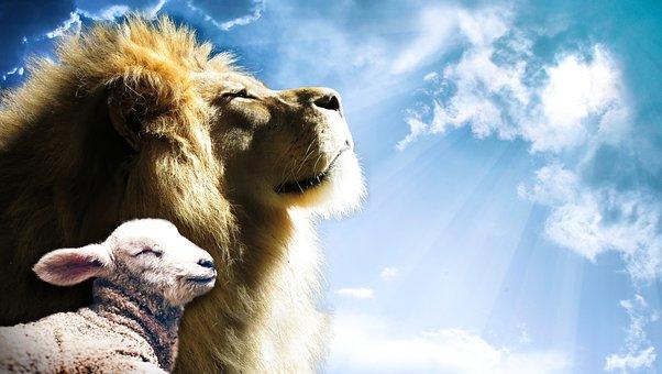Lion, Lamb, Sky, Jesus, God, Holy, Spirit, Bible