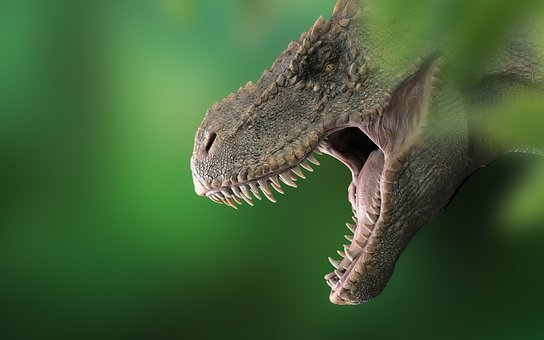 Dinosaur, Tyrannosaurus, Dino, T Rex, Rex, Prehistoric
