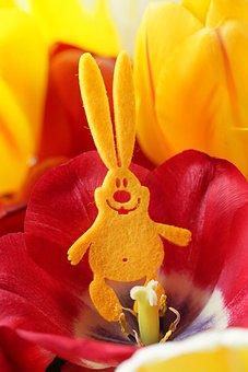 Easter, Rabbit, Hare, Spring, Tulip, Yellow, Red, Felt