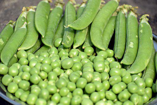 Peas, Green, Vegetable, Food, Healthy, Organic