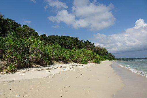Beach, Bay, Vegetation, Littoral, Sea, Island