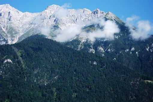Mountain, Rock, Ridge, Hiking, Forest, Landscape, Steep