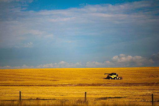 Alberta, Tractor, Fields, Wheat, Canadian, Canada