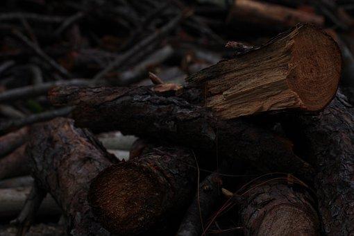 Lena, Wood, Texture, Fire, Flame, Embers, Fireplace