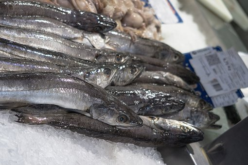 Fish, Market, Food, Seafood, Fresh, Fishing, Eat, Meal