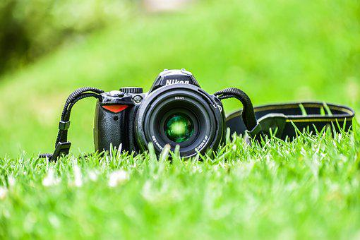 Camera, Grass, Lens, Straps, Nikon, Digital Camera