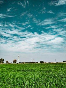 Scenic, Clouds, Blue Sky, Hd Wallpaper, Field