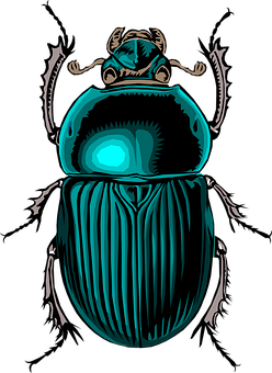 Beetle, Insect, Bug, Scarab, Stink, Dung