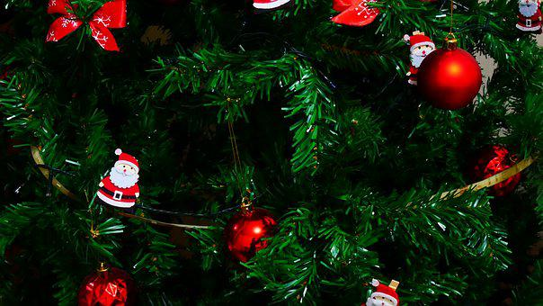 Tree, Christmas, December, Decoration, Red, Decorate