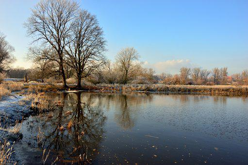 Landscape, River, River Landscape, Bank, Trees, Water