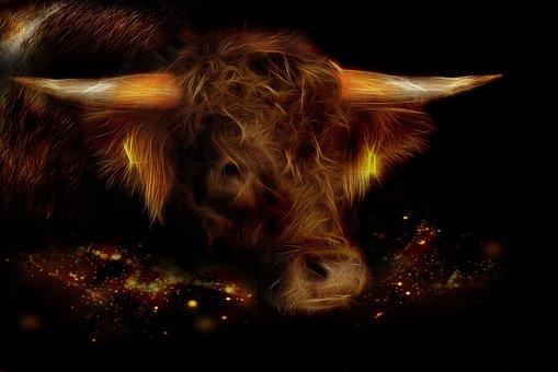 Beef, Fractalius, Brown, Animal, Horns, Ruminant