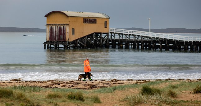Queenscliff, Boat Shed, Walk, Seaside, Ocean, Sea