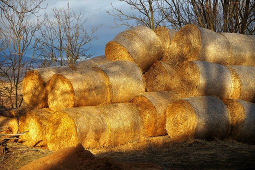 Packages, Hay, Straw, Agriculture, Stacked, Bal