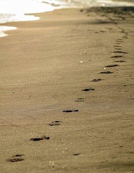 Footprints In The Sand, Track, Sand, Beach, The Coast