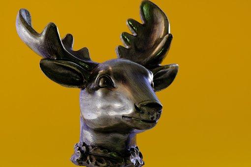 Isolated, Antler, Hirsch, Deer Antler, Sculpture
