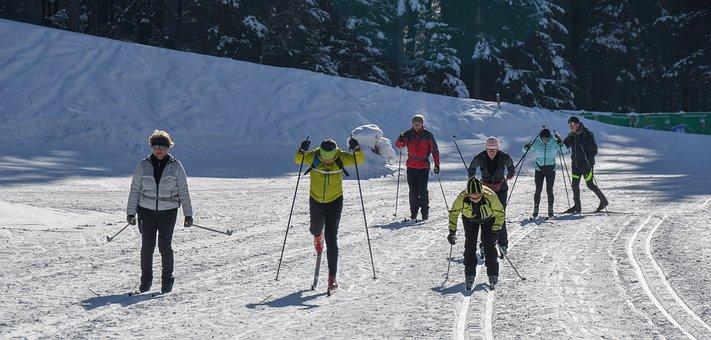 Winter, Snow, Dolomiti, Skiing, Cross Country, Cross
